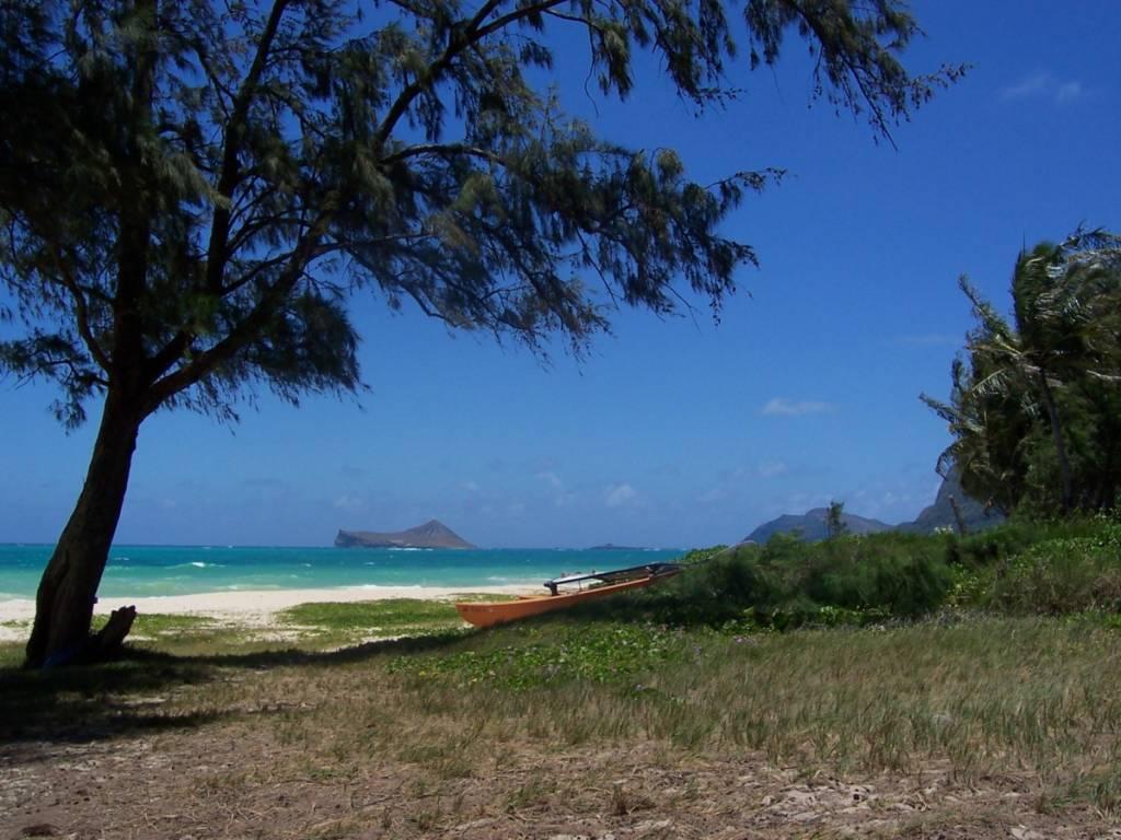 Hawaii-Strand-mit-Boot-1024x768