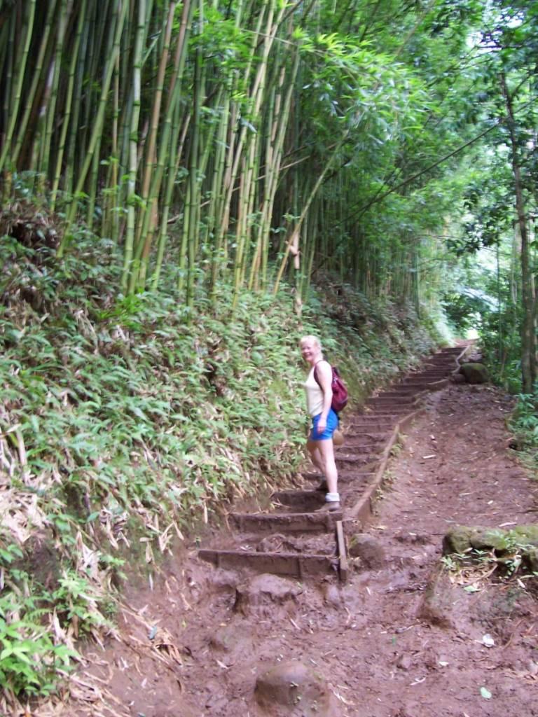 Hawaii-Wandern-768x1024