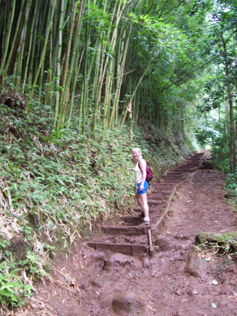 Hawaii-Wandern-768x1024  % Image Name San Diego Author Mollie Moon
